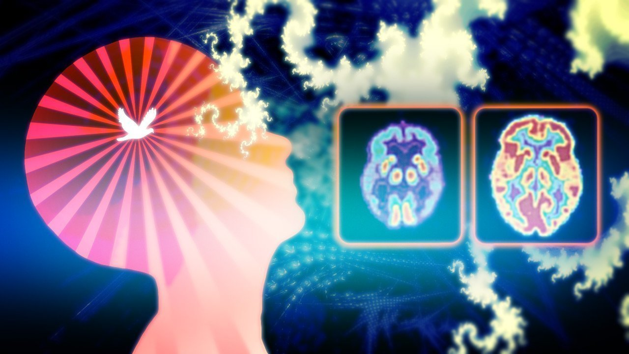 Harvard MRI Study Proves Meditation Rebuilds The Brain's Gray Matter In 8 Weeks